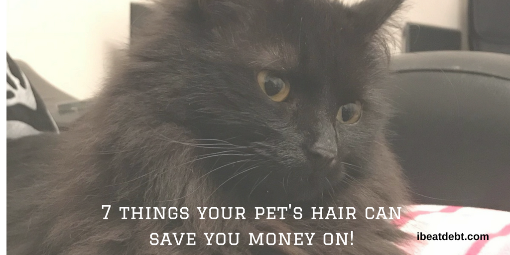 Pet hair use – 7 things your pet's fur can save you money on!