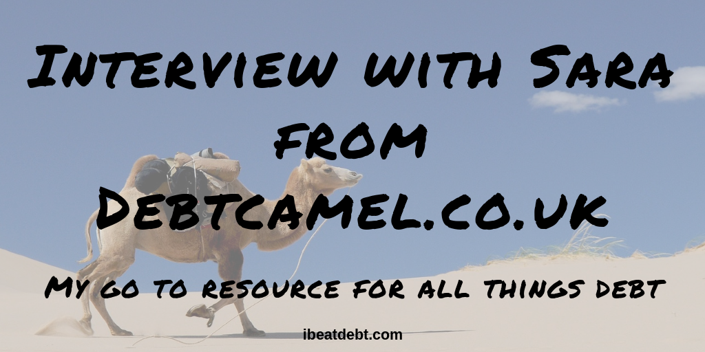 debt camel - camel with text on picture