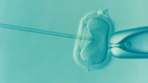 Affording Fertility: Are Frozen Donor Eggs the Cost-Effective Option You Need?